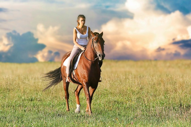 Caduta da cavallo: è responsabile il gestore del maneggio